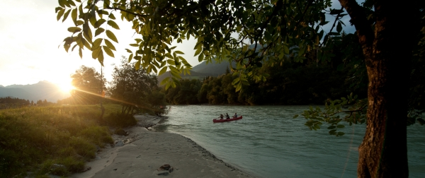 Sommer am Ufer der Drau